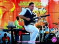 Guitarist playing with Maxi Priest at The 4th Annual Grace Jamaican Jerk Festival in New York City